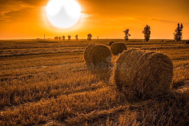Campo do por do sol com pacotes de feno fotografia de stock
