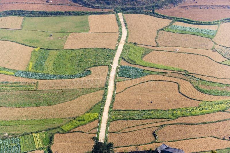 Campo do terraço do arroz na província de Ha Giang imagem de stock