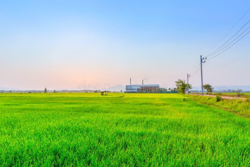 Campo do verde da agricultura com central elétrica da indústria foto de stock