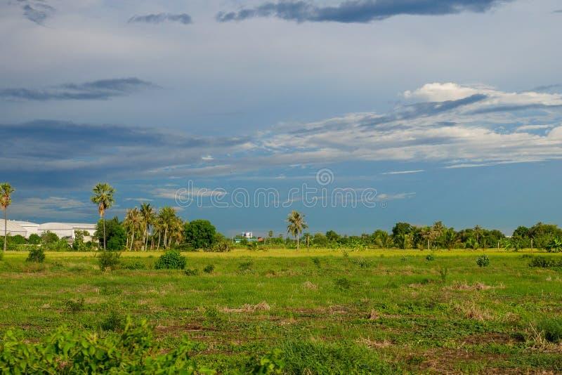 campo do verde da paisagem antes da tempestade da chuva em Tailândia fotos de stock