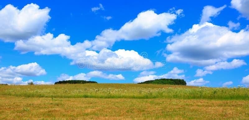 Campo e céu azul com nuvens imagem de stock royalty free