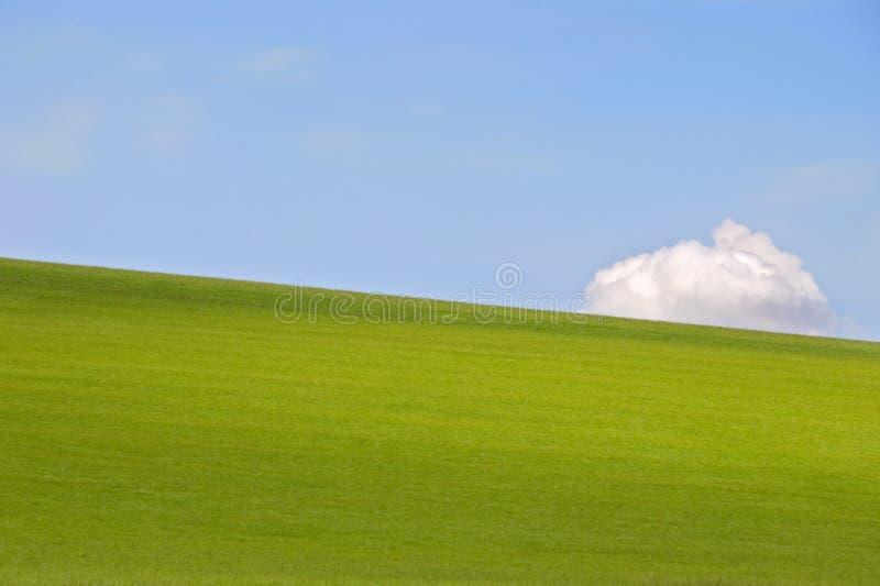 Campo e cielo di erba immagini stock libere da diritti