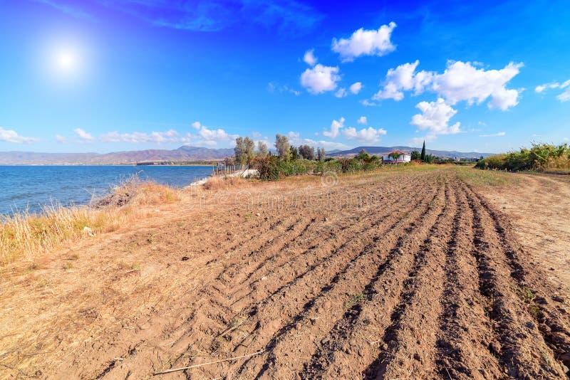 Campo e mar arados imagem de stock