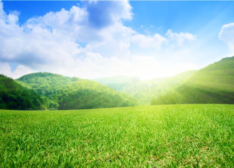 Campo e montagne di estate immagini stock libere da diritti