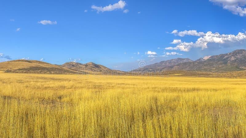 Campo e montanha contra o céu vívido com nuvens fotografia de stock royalty free