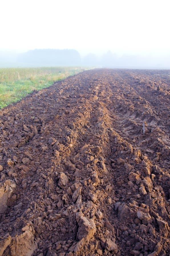 Download Campo E Névoa Arados De Exploração Agrícola Do Outono Foto de Stock - Imagem de horizonte, cultivar: 26500588