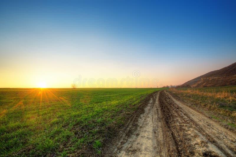 Download Por do sol e campo verde foto de stock. Imagem de fresco - 29840946