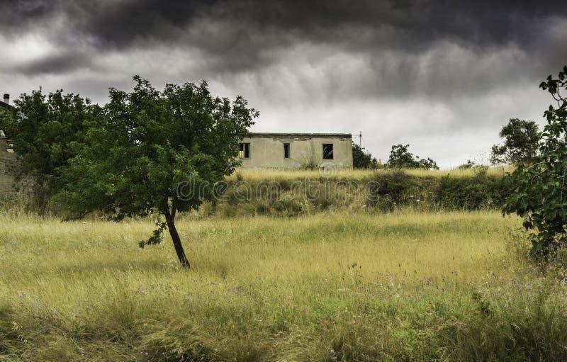 Campo em Calabria foto de stock royalty free