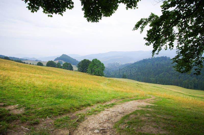 Campo em montes de Pieniny foto de stock royalty free
