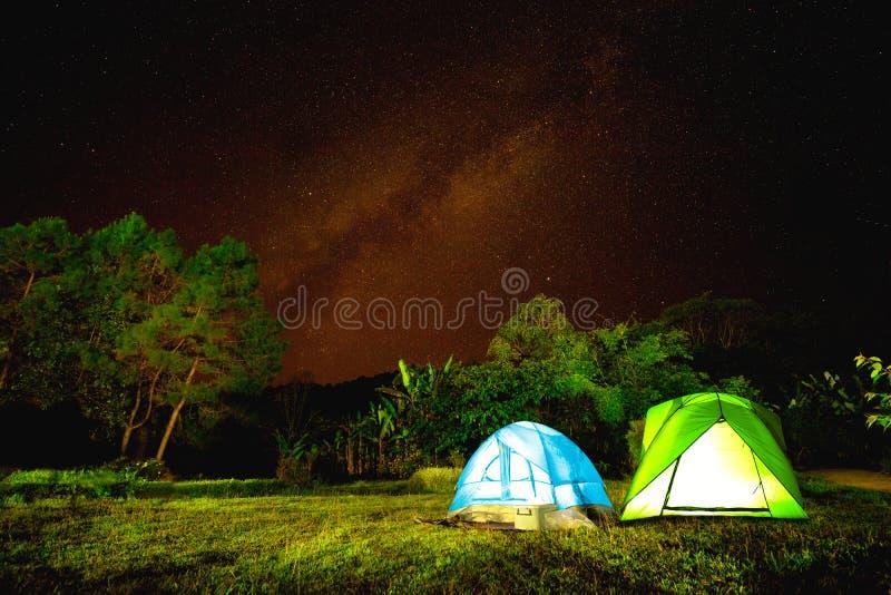 Campo en bosque en la noche con la estrella foto de archivo libre de regalías