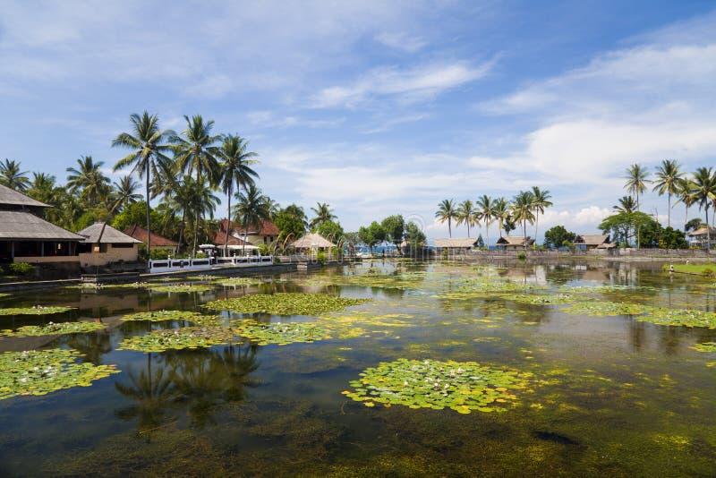 Campo en Candidasa, Bali, Indonesia fotos de archivo