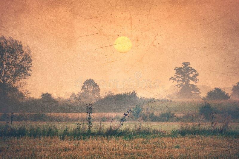 Campo en el amanecer - imagen del vintage fotografía de archivo