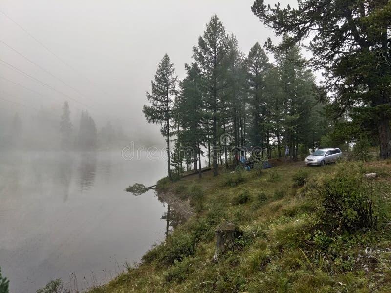 Campo en el lago fotografía de archivo libre de regalías