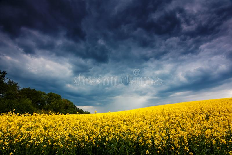 Campo fantástico no céu nublado dramático imagem de stock royalty free