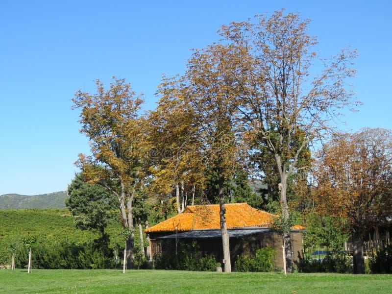 Campo francés en otoño imagen de archivo