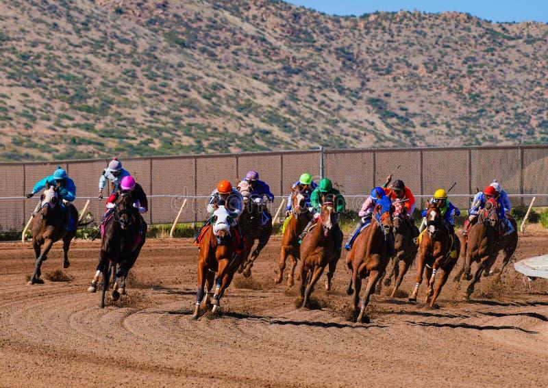 Campo grande de los caballos de raza que redondean la curva final imagen de archivo libre de regalías