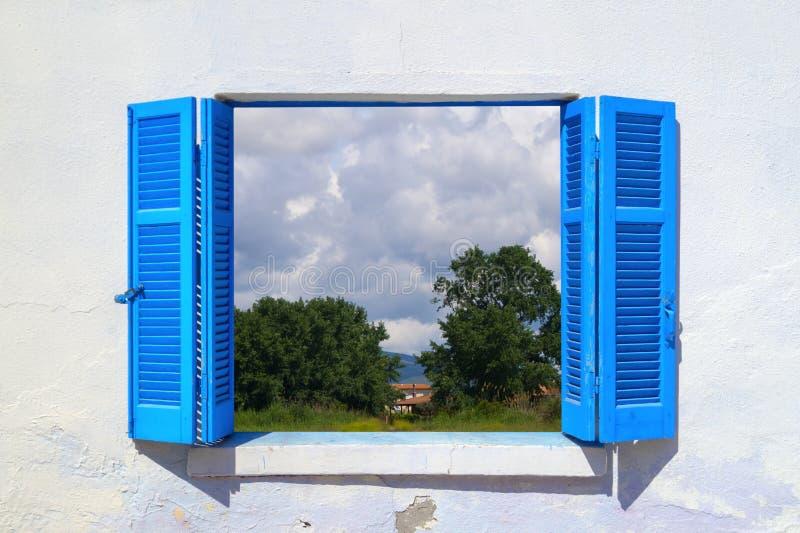 Campo hermoso en ventana azul fotografía de archivo libre de regalías