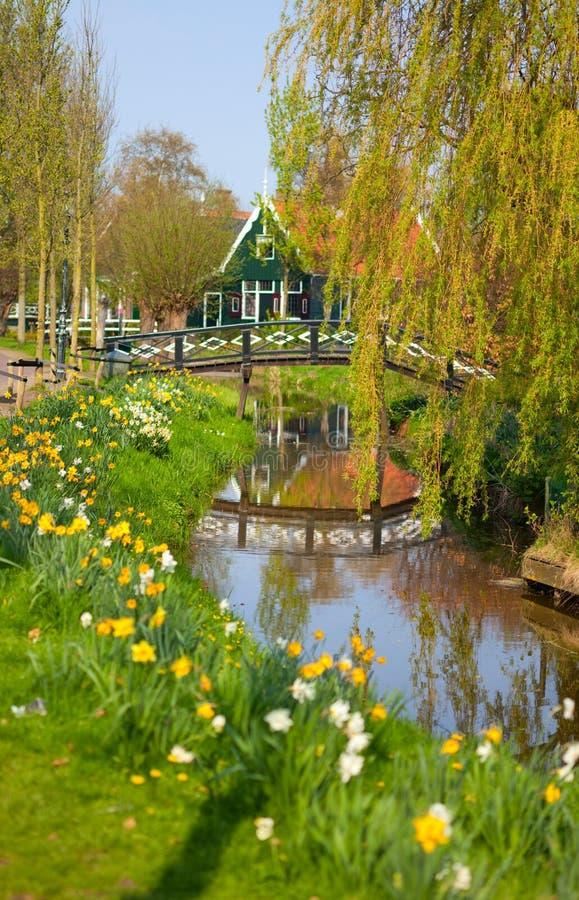 Campo holandês fotografia de stock