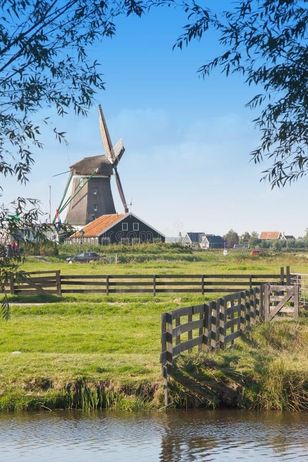 Campo holandês com moinho de vento imagens de stock