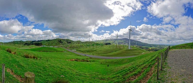 Campo idílico em Nova Zelândia foto de stock