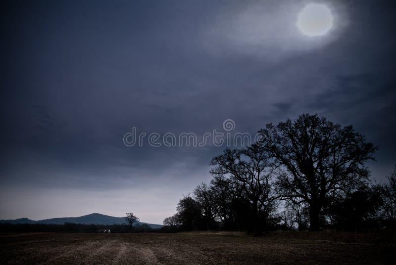 Campo iluminado por la luna imagenes de archivo