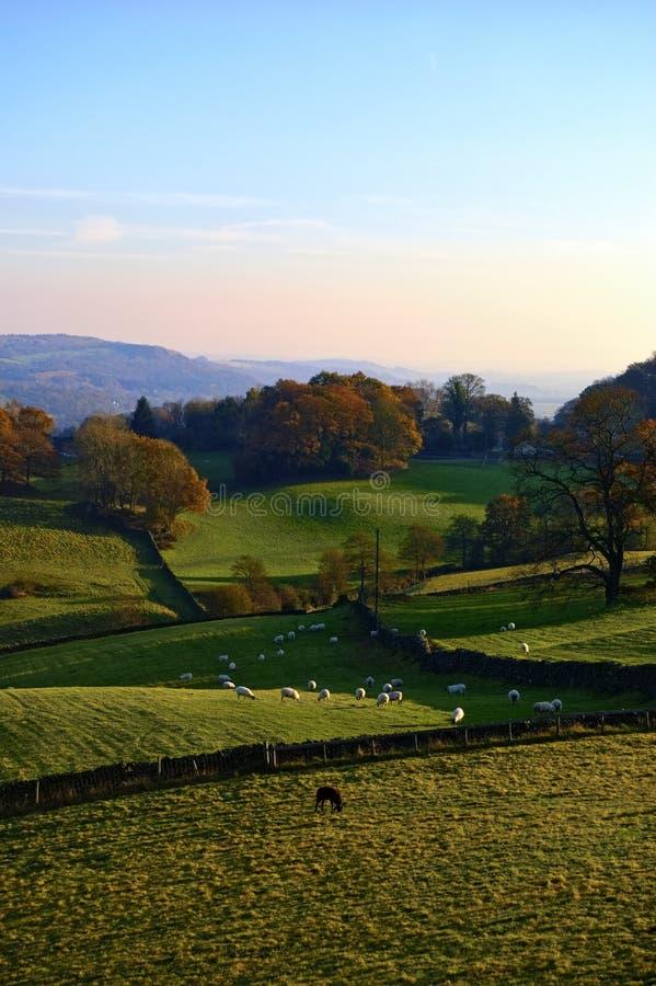 Campo inglés rodante en otoño foto de archivo libre de regalías