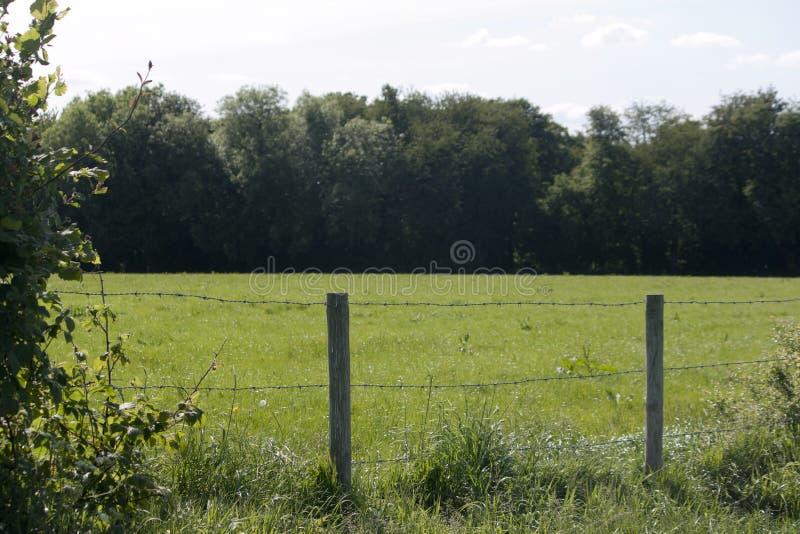 Campo inglés, verde de Holmer, Buckinghamshire imágenes de archivo libres de regalías