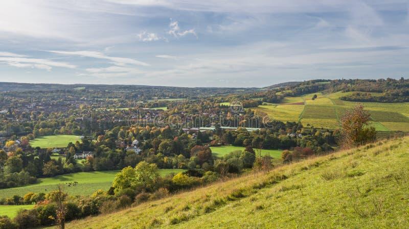 Campo inglês, penas nortes em Surrey fotos de stock royalty free