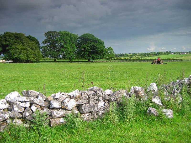 Campo irlandés foto de archivo libre de regalías