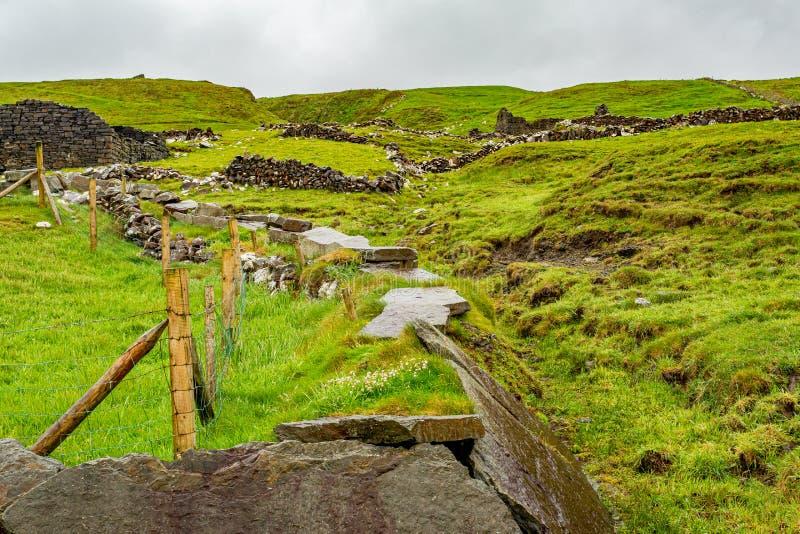 Campo irlandês com ruínas de uma casa e de umas cercas de pedra fotos de stock