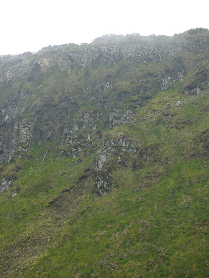 Campo irlandês norte fotos de stock
