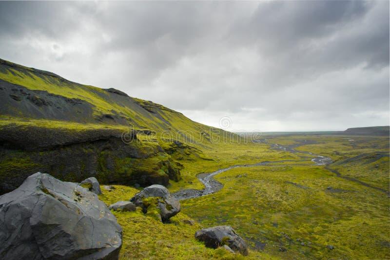 Campo islandês selvagem 1 imagem de stock royalty free