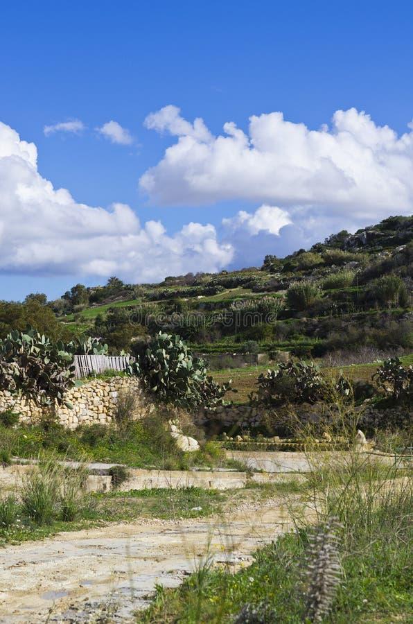 Campo - Malta imagem de stock