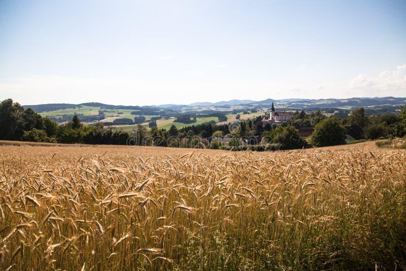 Campo - Muehlviertel, Austria fotografie stock libere da diritti