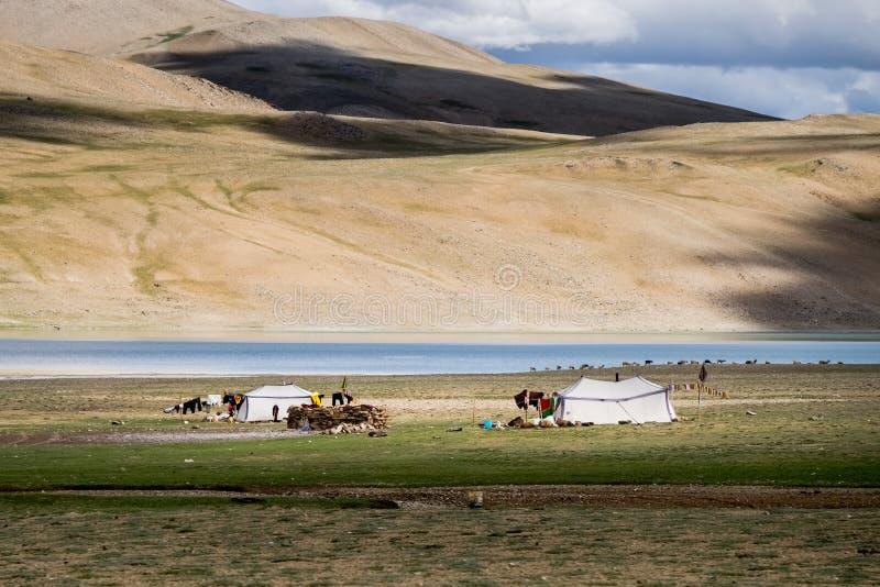 Campo nómada alrededor del lago tso Moriri en Ladakh, la India fotos de archivo