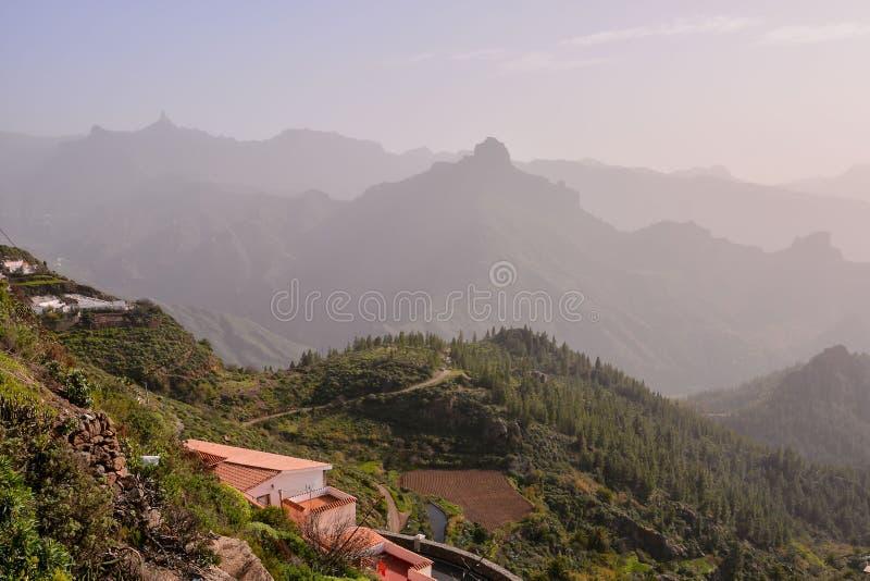 Campo natural europeu em Agaete Gran canaria imagens de stock