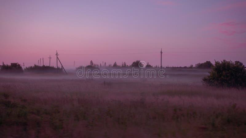 Campo nebbioso fotografia stock libera da diritti
