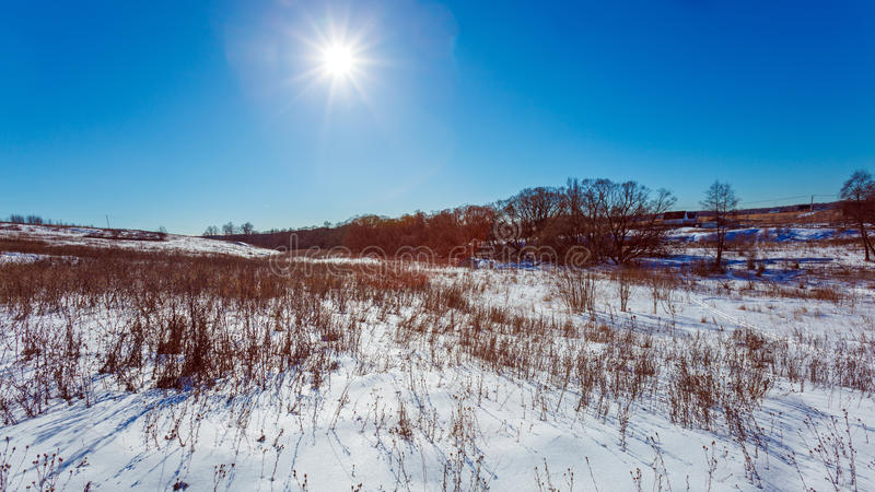 Campo nevado branco ensolarado foto de stock