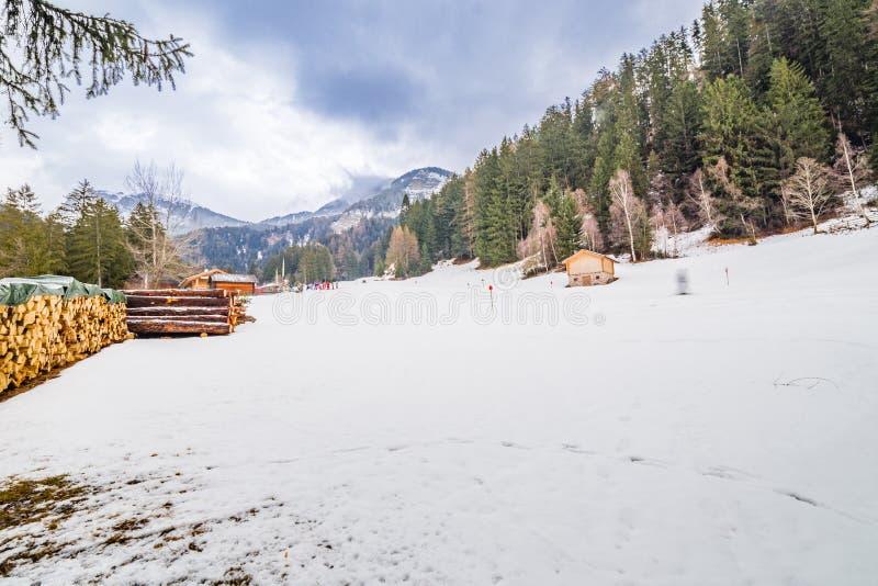 Campo Nevado cerca del bosque alpino imagen de archivo