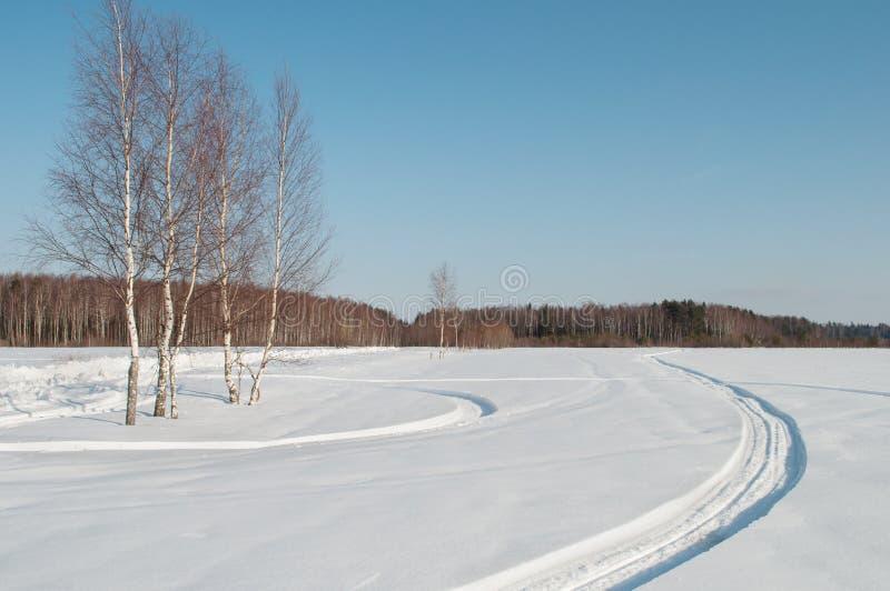 Campo nevado na frente da floresta, tempo de inverno foto de stock