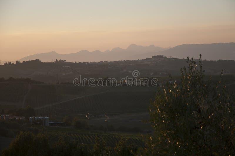 Campo nevoento de Toscânia da opinião da paisagem em Vinci, Italia imagem de stock