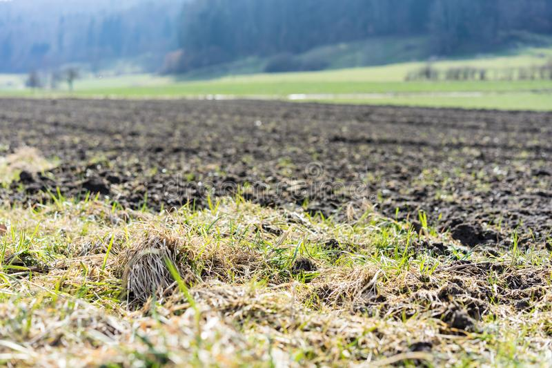 Campo para cultivar a terra agrícola imagem de stock