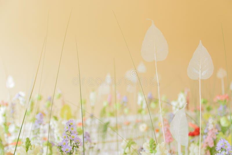 Campo, prato del fiore Impressione della natura fotografia stock libera da diritti