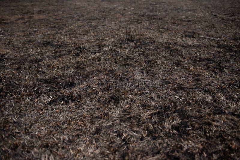 Campo queimado inoperante preto imagem de stock
