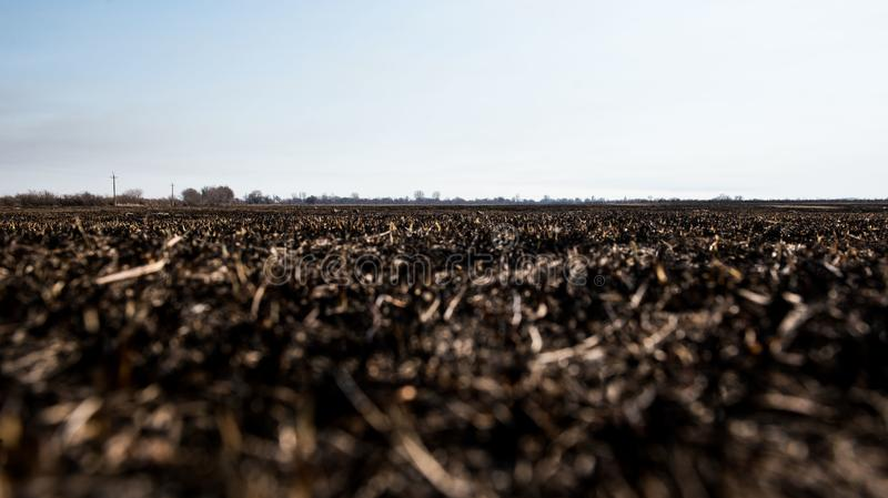 Campo queimado inoperante preto foto de stock