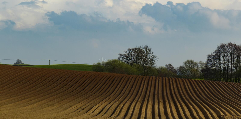 Campo recientemente arado con el cielo azul imágenes de archivo libres de regalías