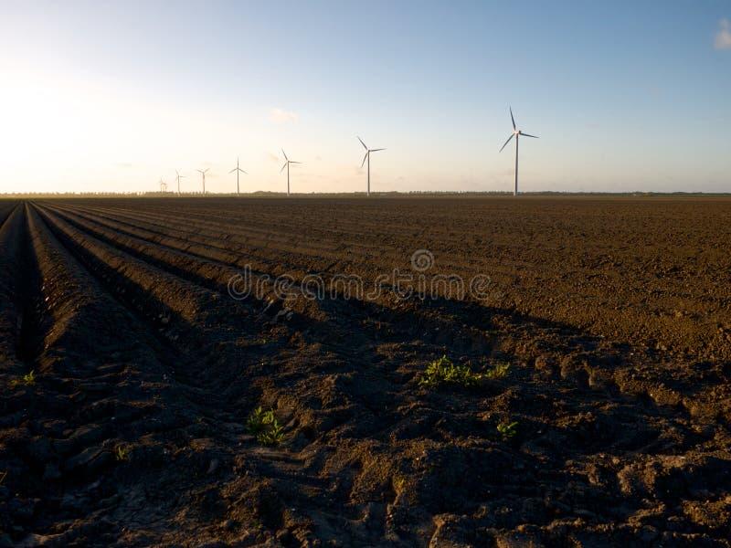 Campo recientemente arado con las turbinas de viento en la puesta del sol imagen de archivo