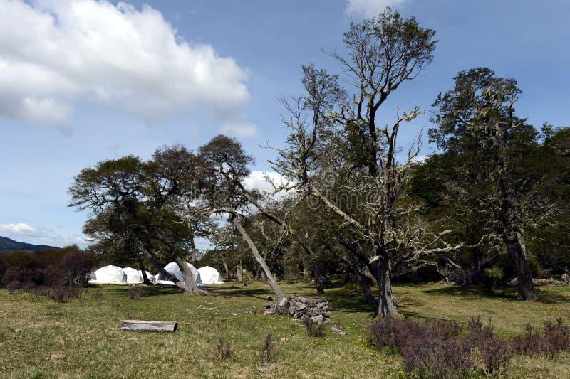 Campo respetuoso del medio ambiente en Tierra del Fuego foto de archivo