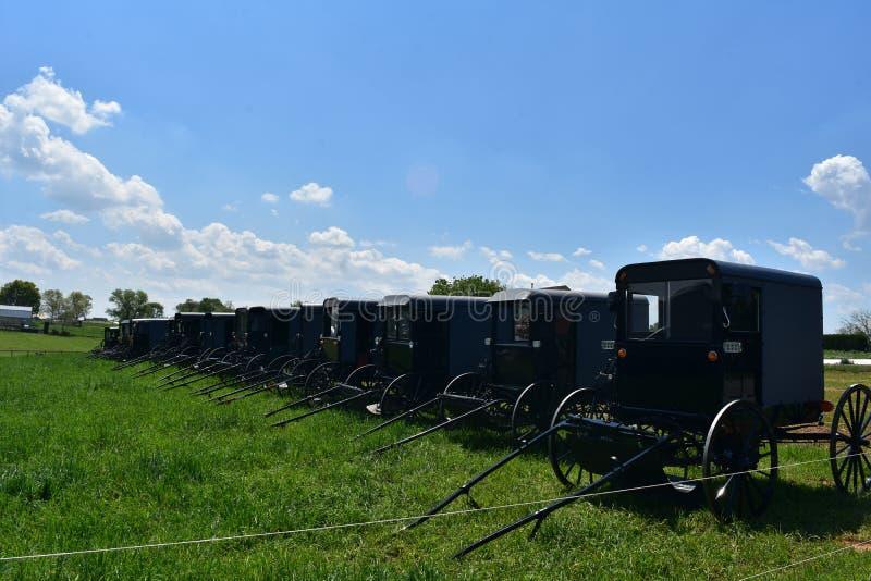 Campo riempito di carrozzini di Amish parcheggiati nella contea di Lancaster fotografie stock