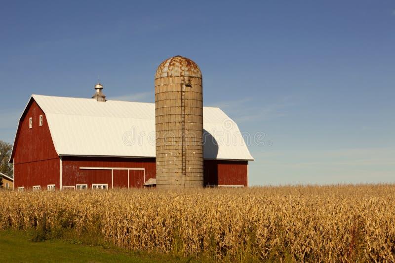 Campo rosso del granaio, del silo e di cereale fotografie stock libere da diritti